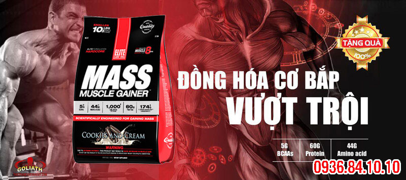 cach dung EliteLab Mass Muscle Gainer 10LBS